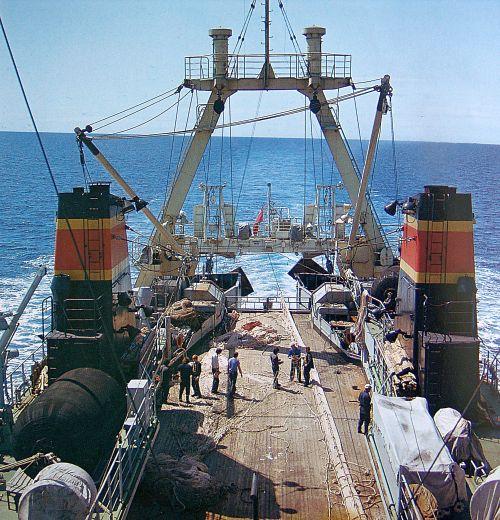 рыболовного флота